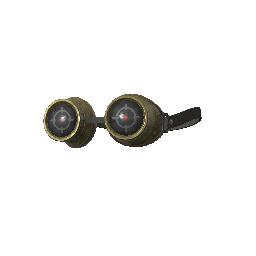 Bullseye Goggles