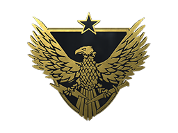 准将胸章Brigadier General Pin