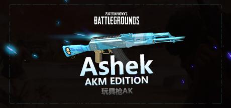 绝地求生玩具枪Ashek AKM CDK&账号