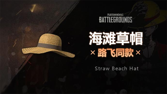 PUBG海滩草帽游戏截图1