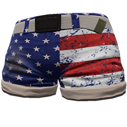Stars and Stripes Shorts