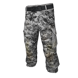Digital Camo Pants