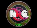 印花 | NRG(全息)| 2019年卡托維茲錦標賽Sticker | NRG (Holo) | Katowice 2019