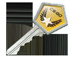 冬季攻势武器箱钥匙Winter Offensive Case Key