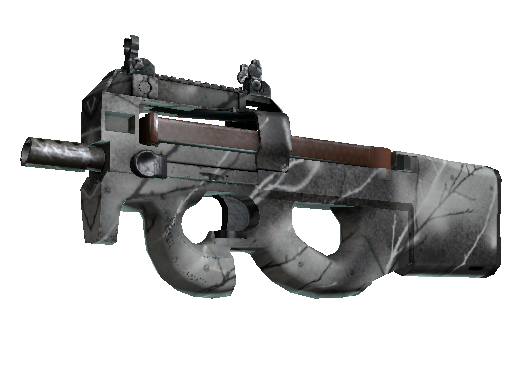 P90 | 白蜡木 (崭新出厂)P90 | Ash Wood (Factory New)