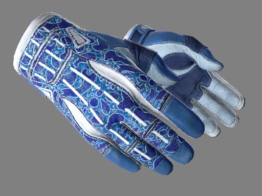 运动手套(★) | 双栖 (略有磨损)★ Sport Gloves | Amphibious (Minimal Wear)