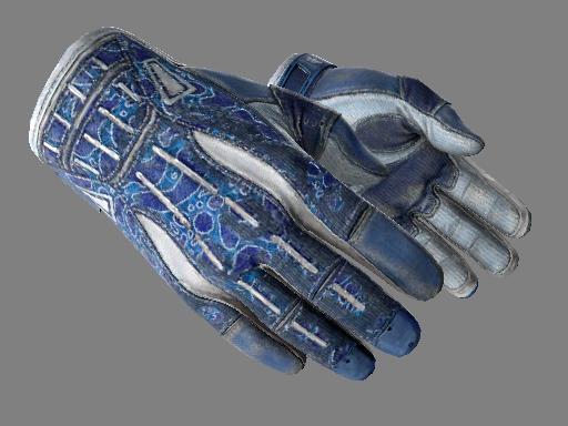 運動手套(★) | 雙棲 (戰痕累累)★ Sport Gloves | Amphibious (Battle-Scarred)