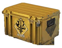 光譜武器箱Spectrum Case