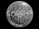 印花 | smooya | 2019年卡托维兹锦标赛Sticker | smooya | Katowice 2019