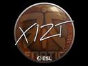 印花 | Xizt | 2019年卡托维兹锦标赛Sticker | Xizt | Katowice 2019