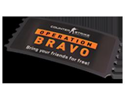 """""""英勇大行動""""通行證Operation Bravo Pass"""