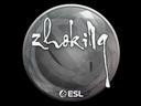 印花 | zhokiNg | 2019年卡托維茲錦標賽Sticker | zhokiNg | Katowice 2019