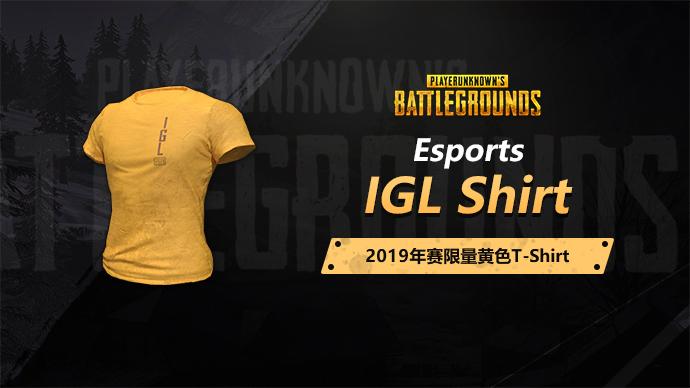 【5.31绝版】PUBG亚太联赛IGL黄色T恤游戏截图1