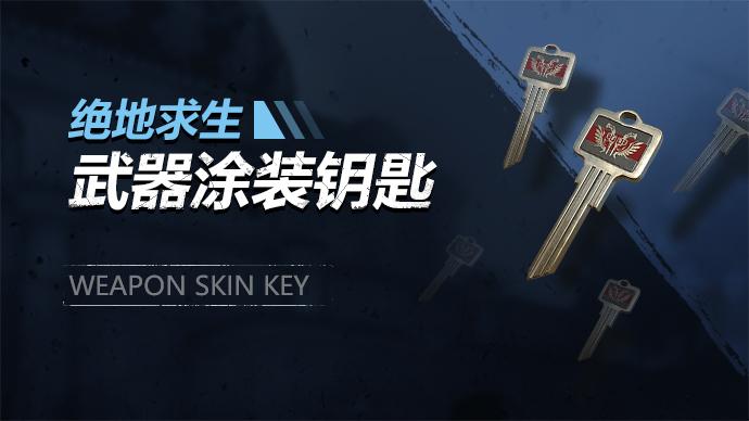 绝地求生武器涂装钥匙游戏截图1