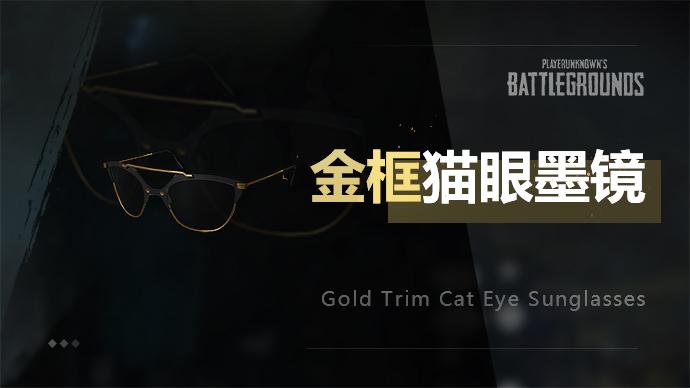 PUBG金框猫眼墨镜游戏截图1
