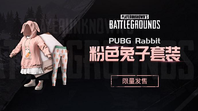 PUBG粉色兔子套装游戏截图1