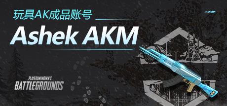 PUBG玩具枪Ashek AKM成品账号
