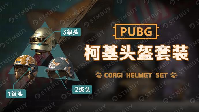 PUBG柯基帮头盔套装游戏截图1